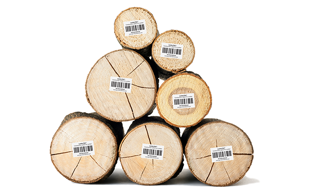 A stack of 7 logs, of varying sizes, labeled with LumberTAG labels for wooden surfaces, printed with text and 1D barcodes.